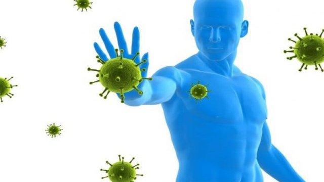 Increases Immunity